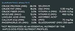 Purina Pro Plan Dry Dog Food, Focus, Small Bites Lamb & Rice Formula, 37.5-Pound Bag, Pack of 1