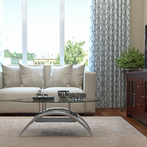 Gibson Living Cleveland 38 Inch Glass Coffee Table with Black Mesh Magazine (Black Mesh Coffee Table)
