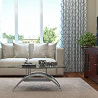 Gibson Living Cleveland 38 Inch Glass Coffee Table with Black Mesh Magazine Holder