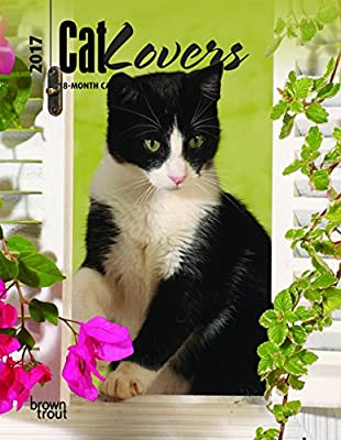 Cat Lovers 2017 Engagement Calendar