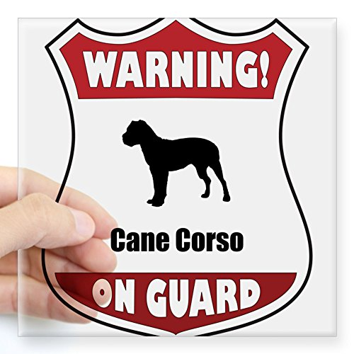 CafePress - Cane Corso Sticker - Square Bumper Sticker Car Decal, 3