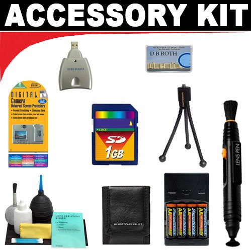 Digital Camera 1gb Deluxe Accessory (1GB Deluxe DB ROTH Accessory Kit For The Aiptek DV900 Digital Camcorder)