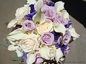 20+ LISIANTHUS LAVENDER AND WHITE FLOWER SEEDS MIX /LONG LASTING ANNUAL