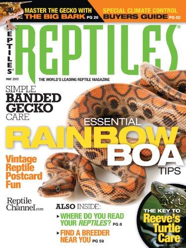 reptiles-1-year