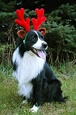 Midlee Christmas Reindeer Antlers with Ears for Large Dogs from Midlee