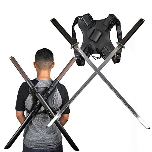Practice Ninja Sword (Ace Martial Arts Supply Leonardo Dual Ninja Swords with Back Carrying Scabbard)