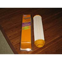 ARM & HAMMER Hoover Twin Chamber HEPA Filter