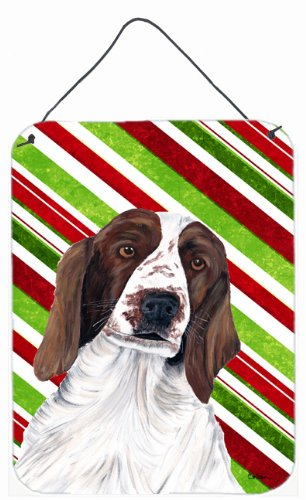 Multicolor Carolines Treasures SC9340DS1216 Welsh Springer Spaniel Holiday Christmas Aluminium Wall or Door Hanging Prints 12x16