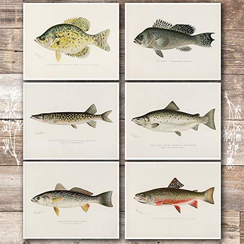 Vintage Fish Wall Art Prints (Set of 6) - Unframed - 8x10s | Fishing Decor ()