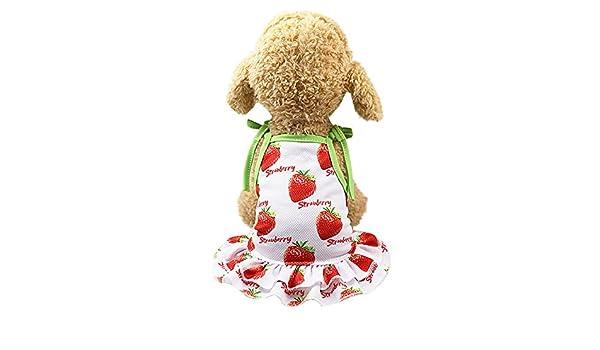 JYJM - Vestido de Encaje para Perro o Gato, diseño de Flor con ...