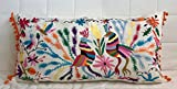 Exclusive Lumbar pillow cover made from hand embroidered Otomi fabric.