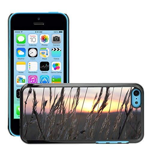 Stampato Modelli Hard plastica Custodie indietro Case Cover pelle protettiva Per // M00421772 Sunset blé Spikes Lumière // Apple iPhone 5C