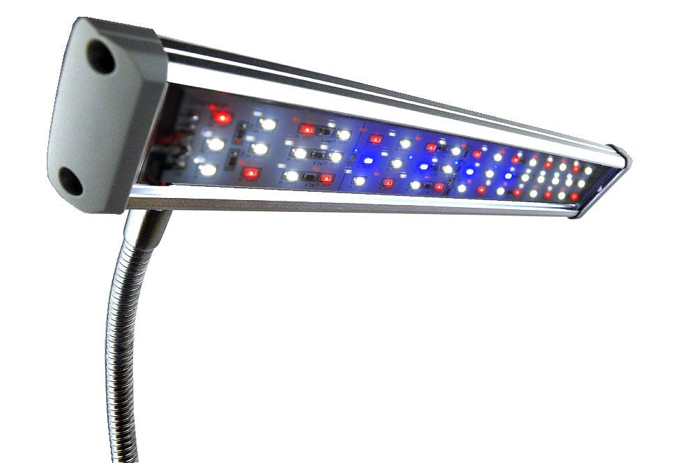 Finnex FugeRay Planted+ Aquarium LED Light Plus Moonlights, Cliplight by Finnex