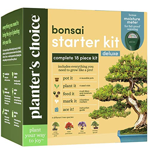Bonsai Tree Growing Kit – Grow 4 Indoor Bonsai Trees – Plant a Garden from Seeds – Unique Gardening Gifts for Women…