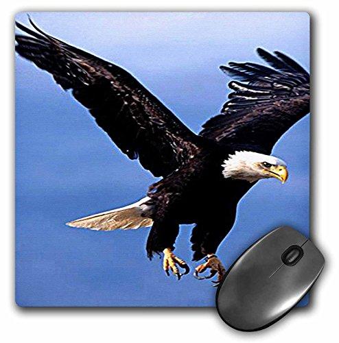 .25 Inches Mouse Pad, Bald Eagle (mp_585_1) ()