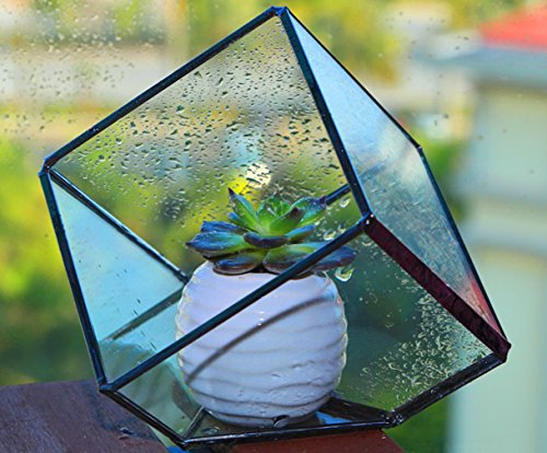 Modern Artistic Clear Glass Cube Box Glass Plant Terrarium / Decorative Votive Candle, Tea Light Holder
