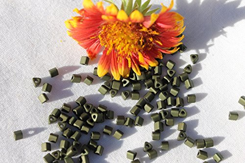 8/0 Triangle Toho Glass Seed Beads 3-Matte-Color Dark Olive 14 Grams # 617. Perfect for Earrings, Necklaces or (Opal Glass Triangles)
