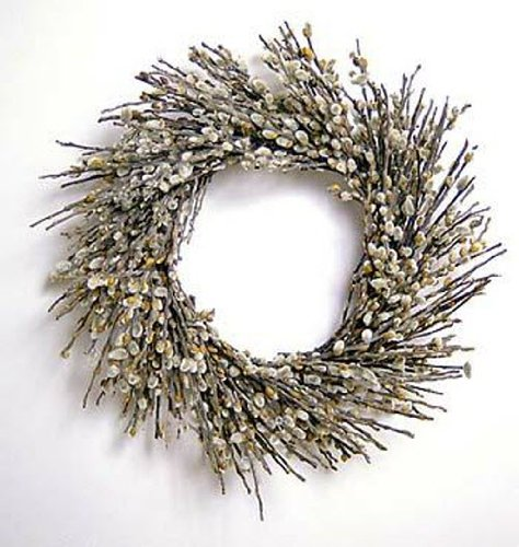 Pussy Willow Wreath 18 Pussy Willow Wreath 18 Flora Pacifica 42031