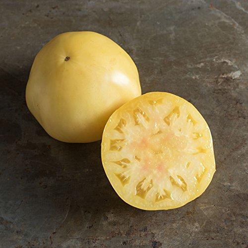 snow white tomato seeds - 6