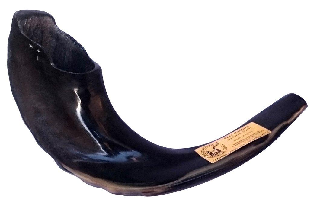 15 Kosher Black Rams Horn Polished Shofar by Peer Hastam® - Made in Israel + Anti Odor Spray