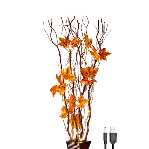 LIGHTSHARE 36 Inch 16LED Natural Lighted Willow Twig Branch, Maple Leaf, Built-in Timer, USB Plug-in and Battery Powered, D
