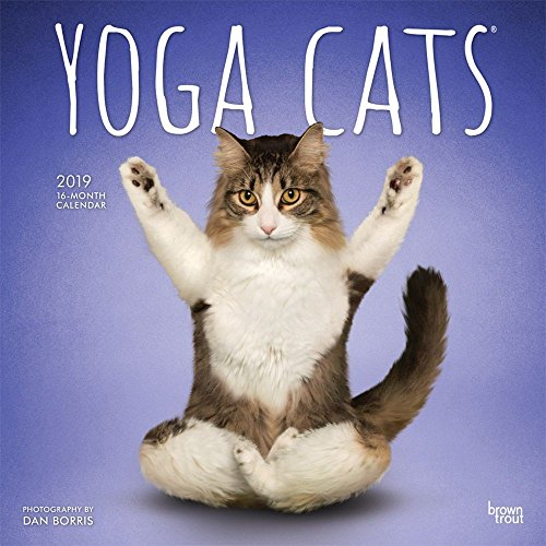 (2019 Yoga Cats Wall Calendar, Funny Cats by BrownTrout)