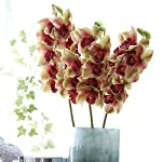 1Pc-Orchid-Artificial-Flowers-for-Decoration-Real-Touch-Artificial-Silk-Orchid-Flower-Arrangements-Grand-Cymbidium-Orchid-Latex-Artificial-Flowers-for-Home-Party-Wedding-Decoration-Purple-Light