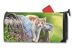 MailWrap Kitty Cool Down por la docena de gran buzón cubierta