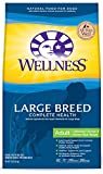 Cheap Wellness Complete Health Natural Dry Large Breed Dog Food, Chicken & Rice, 15-Pound Bag