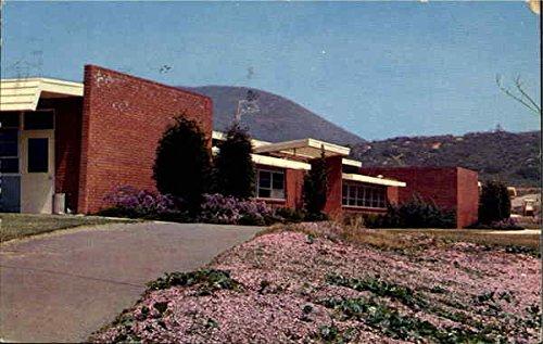 San Marcos College >> Amazon Com Palomar College San Marcos California Original