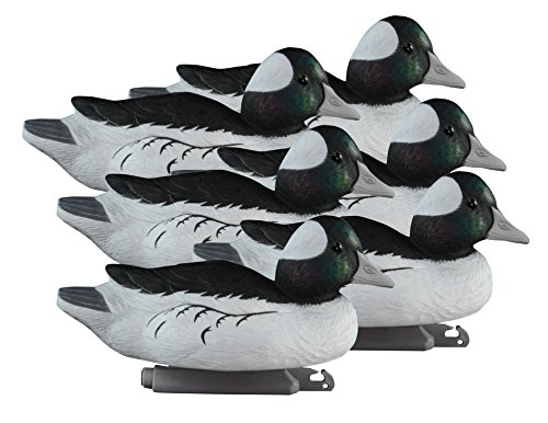 Higdon Outdoors Standard Bufflehead, Foam Filled, Drakes by Higdon Decoys