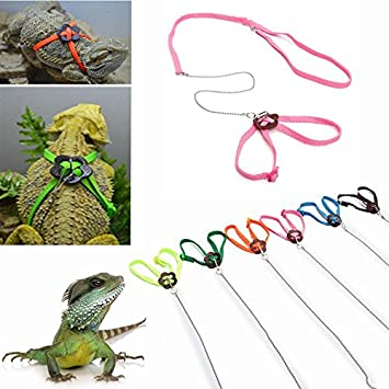 Nicehome Adjustable Pet Reptile Birds Lizard Harness Leashes ...