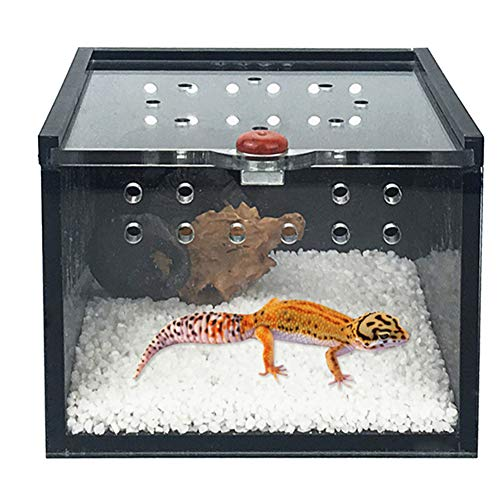 AOFITEE Reptile Terrarium, Acrylic Transparent Breeding Box Container Mini Habitat for Lizard Chameleon Spider Snake or Reptiles & Amphibians -