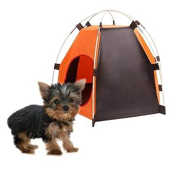 Ducomi caseta para Perro, Plegable y Portátil para Perros de pequeño tamaño - Tienda de