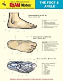 Foot and Ankle Anatomy, Research & Education Association Editors, 0878912371