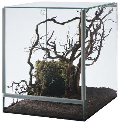 Glas Terrarium Glasterrarium 25x30x30 25 30 Falltür