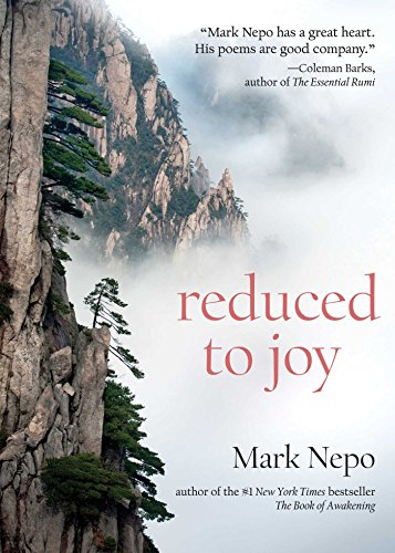 Reduced to Joy cover