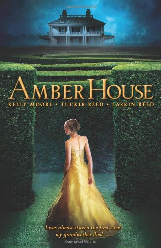 Amber House (Amber House, Book 1)