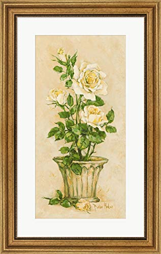 Shades of Rose I by Barbara Mock Framed Art Print Wall Picture, Wide Gold Frame, 19 x 30 inches