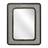 Honey-Can-Do BTS-06583 Accessory Magnetic Mesh Mirror, Black, 5.51