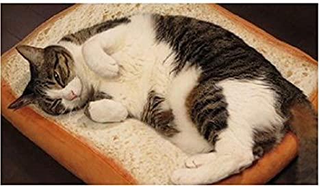 Amazon.com : HAPPYX Cat Bed Dog Bread shaped Bed, Soft Warm Machine Washable Bolstered Microfiber Cushion Nest Bed Sofa for Cat Dog Rabbit Puppy Pet ...
