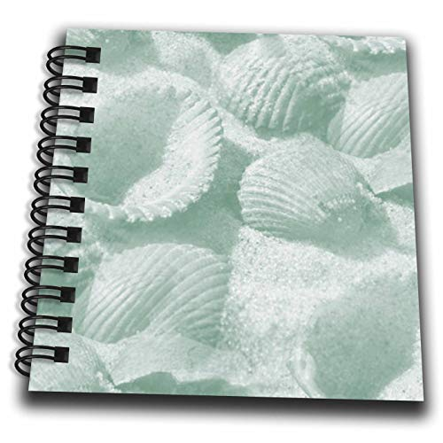 (3dRose Lens Art by Florene - Beach Decor - Image of Seafoam Green Seashells On Sand - Mini Notepad 4 x 4 inch (db_305839_3))