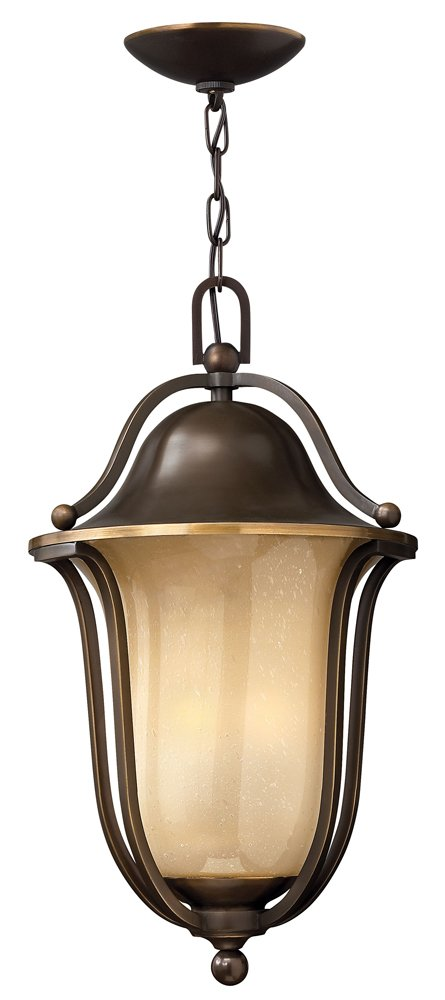 Bolla Outdoor Hanging Lantern Finish: Black