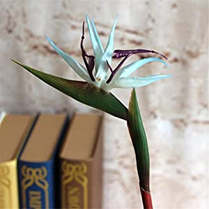 Lily Garden Pack of 6 Bird of Paradise Spray Natural 7