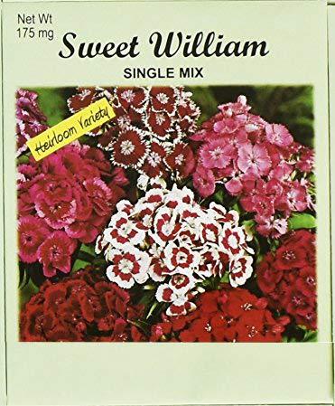 Set of 50 Flower Seed Packets! Flower Seeds in Bulk (50, Sweet William) (Grow William Sweet)