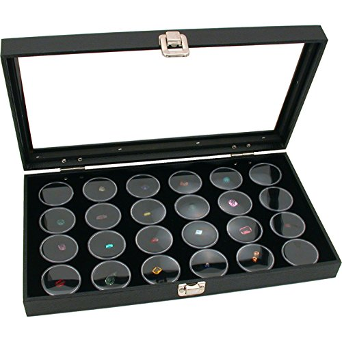 display case for state quarters - 6