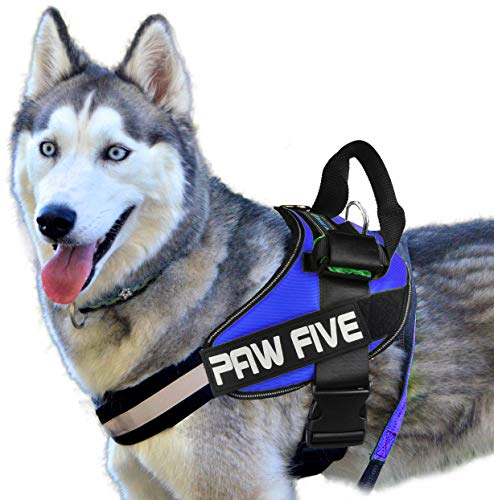 Paw Five CORE-1 No-Pull Reflective Dog Harness with Built-in Waste Bag Dispenser Adjustable Padded Control for Medium and Large Dogs, Check Sizing Chart Before Ordering (Large, Sky Blue)