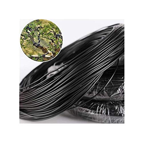 DaJun Tree Coaching Wires for Bonsai Tree,Lengthy Aluminum Backyard Plant Bonsai Coaching Wire Plant Twist Tie -1.5mm, 2.0mm,2.5mm,3.0mm,3.5mm- -Anti-Corrosion and Rust Resistant