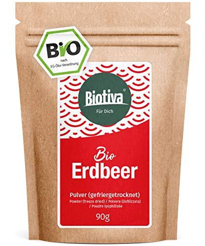 Erdbeer Pulver Bio 90g gefriergetrocknet - Fragaria - Superfood - vegan, laktosefrei, sojafrei - wiederverschließbarer Vorratsbeutel