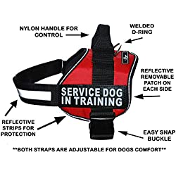 """Servcie Dog in Training Nylon Dog Vest Harness. Purchase Comes with 2 Reflective Service Dog in Training pathces. Please Measure Your Dog Before Ordering (Girth 30-42"""", Red)"""